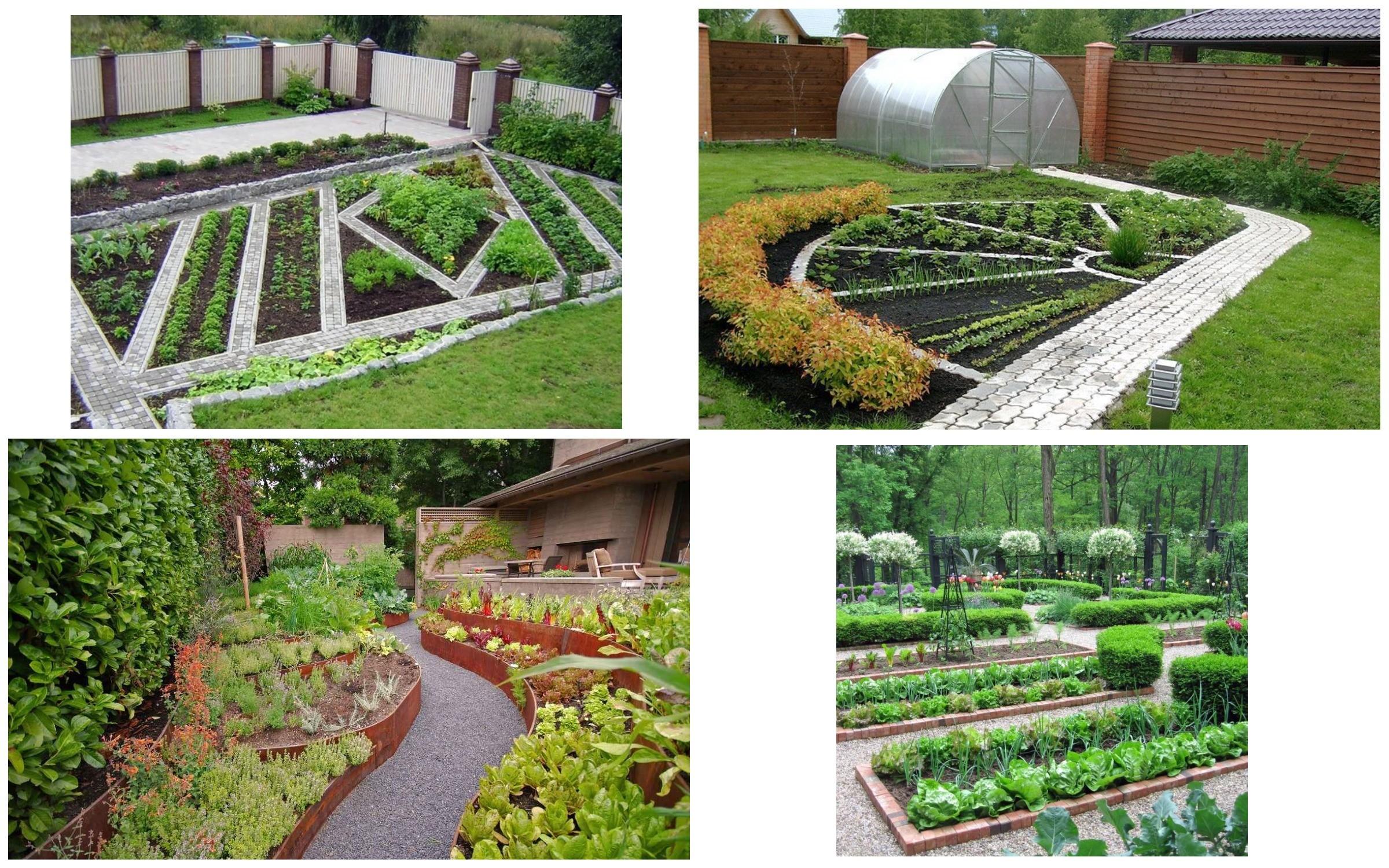 изображение садово-огородной зоны