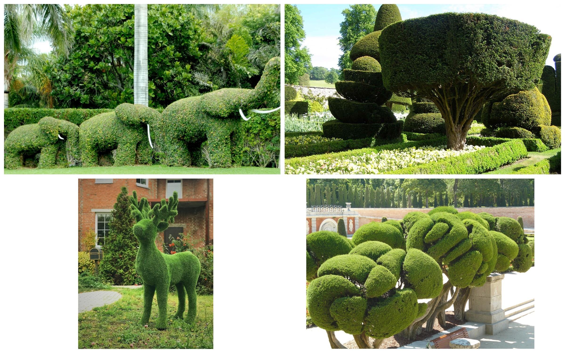 изображение растительных скульптур