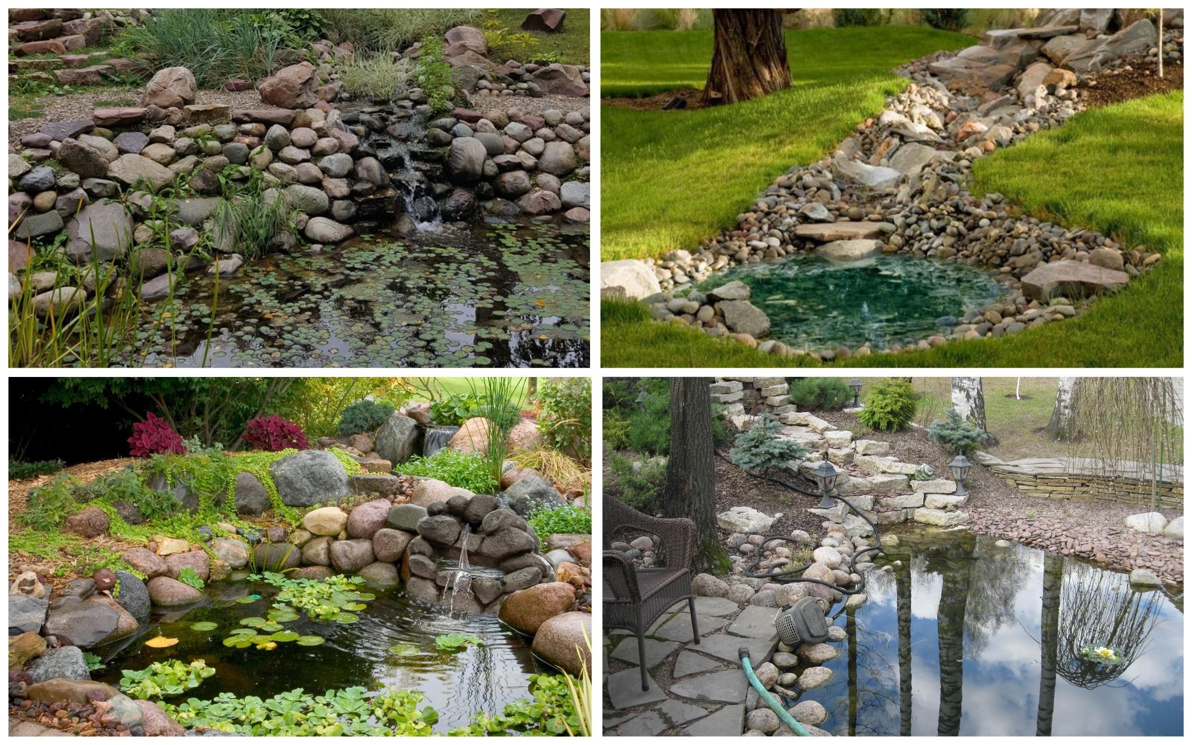 изображение водоема с камнями вдоль берега