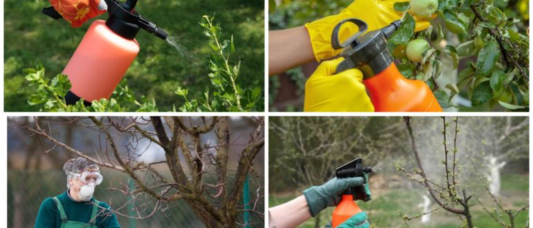 изображение обработки сада от вредителей