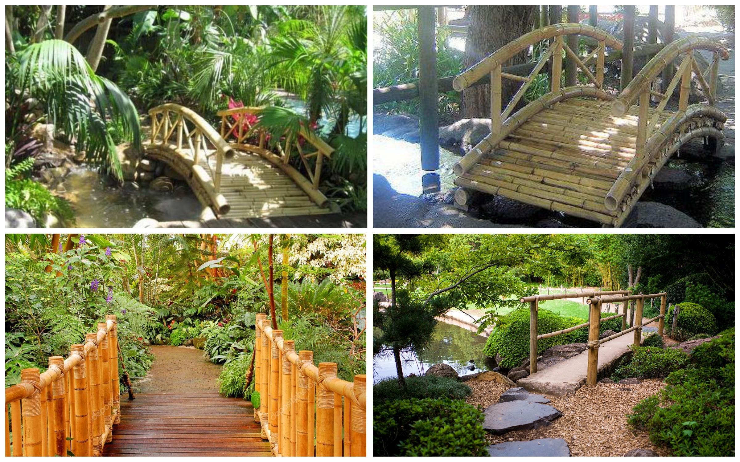 изображение мостики из бамбука