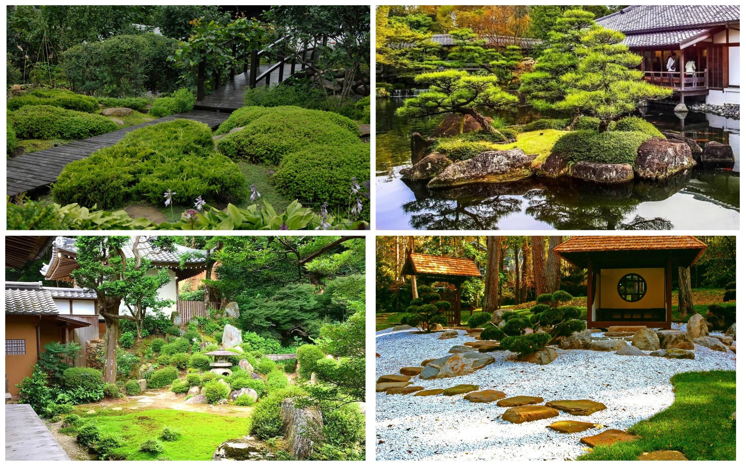 изображение японский стиль сада
