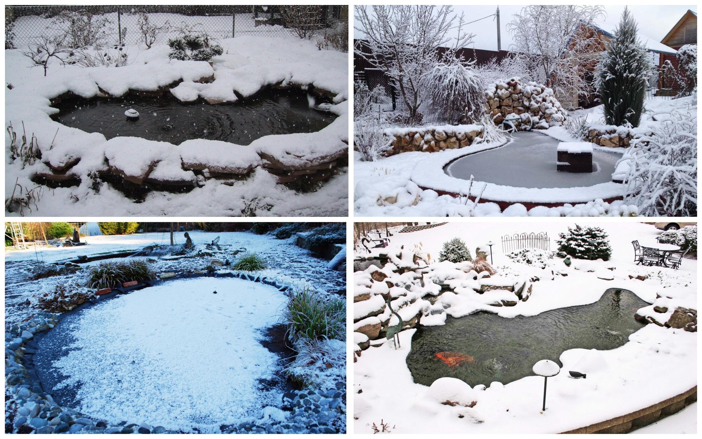 изображение Подготовка пруда к зиме