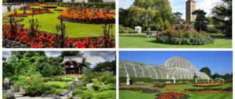 фото сады Кью Лондон Kew Gardens