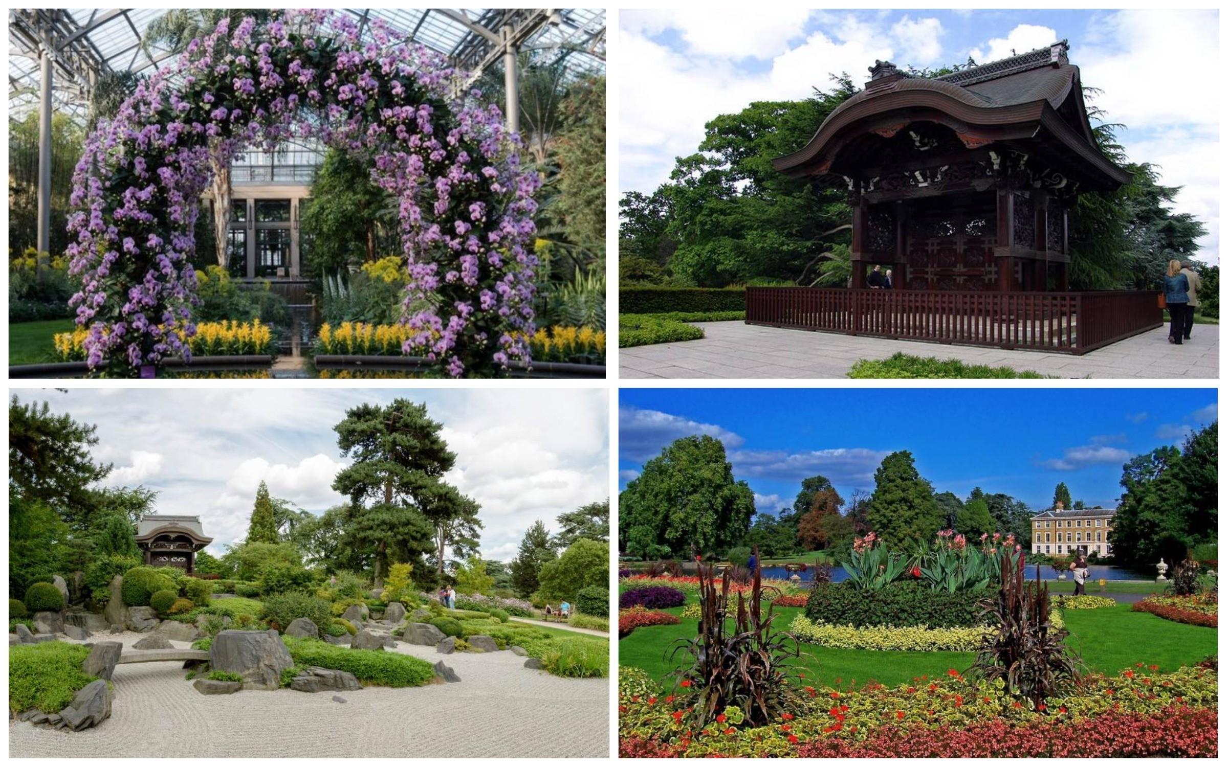 изображение Kew Gardens достопримечательности