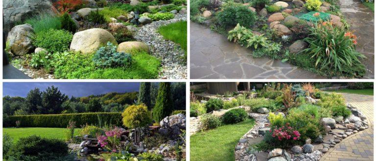 фото красивых видов рокария в саду