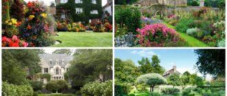 фото английский сад
