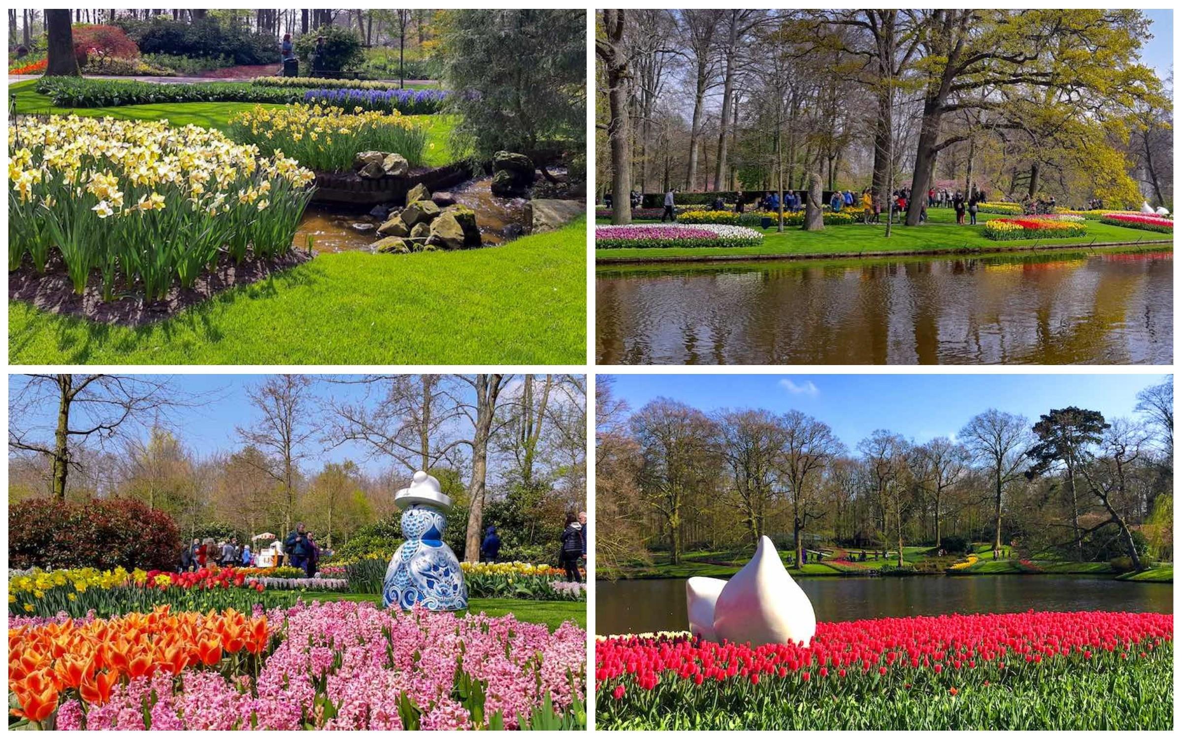 фото сады в нидерландах