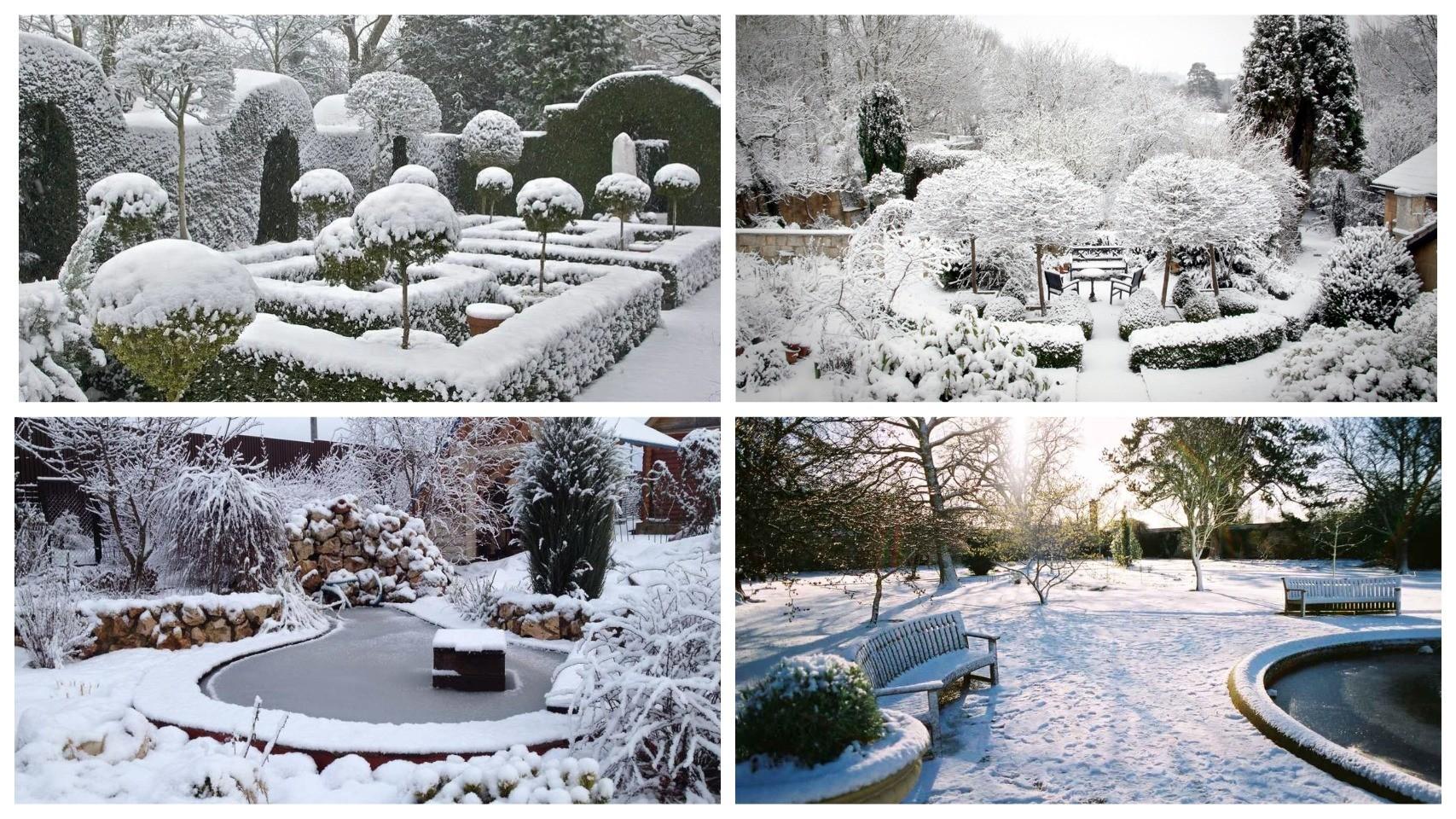 фото ландшафт в зимний период